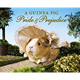 shop-book-guinea-pride-and-prejudice