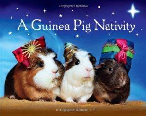 A Guinea Pig Nativity
