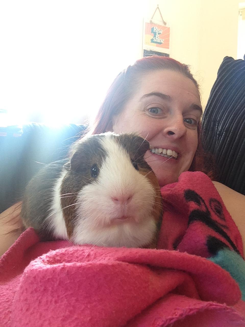 Aimee S Marathon For April Lodge April Lodge Guinea Pig